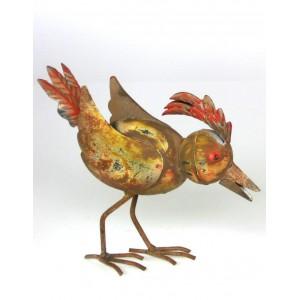 Pták barevný