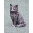Kočka sedící malá